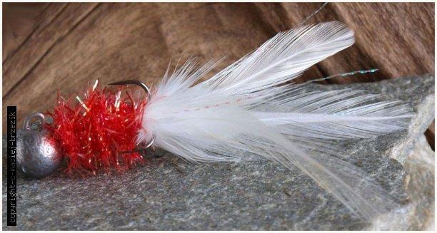 kalsyczny red white