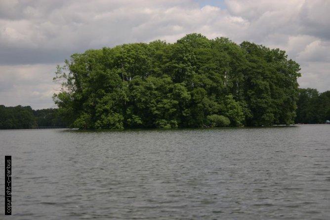 mała wyspa na jeziorze Lubiąż