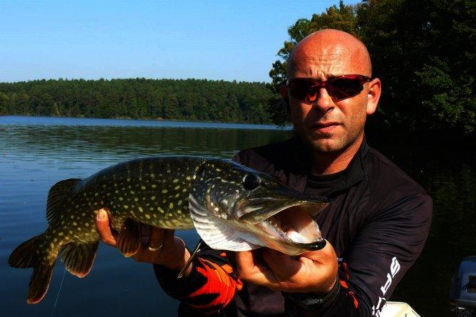 lipcowy szczupak z jeziora Lubiąż