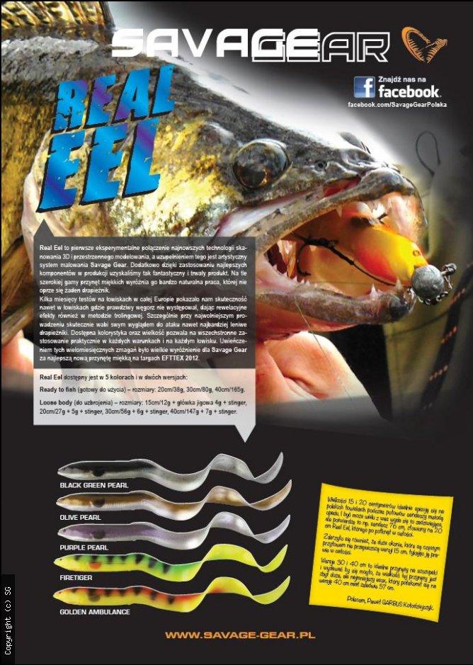 Real eel
