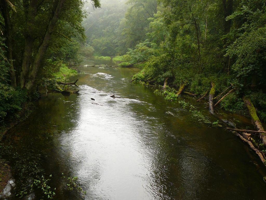 Rzeki, rzeczki i strumienie